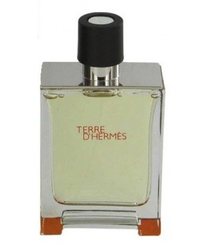 Terre D'Hermes for men by Hermes