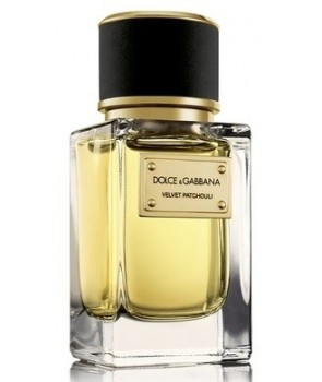Velvet Patchouli Dolce&Gabbana for women and men