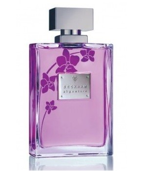 Signature for Her for women by David Beckham
