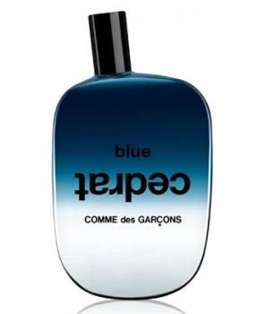 Sample Blue Cedrat Comme des Garcons for women and men