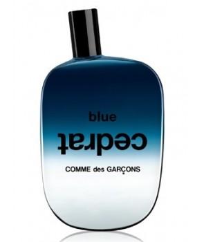 Sample Blue Cedrat Comme des Garcons for women and men