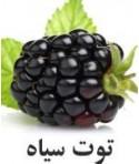 رایحه توت سیاه