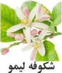 رایحه شکوفه لیمو