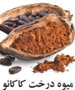 پوسته کاکائو