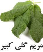 کلاری سیج