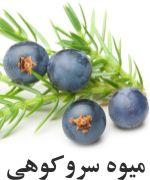 درخت عرعر Berries