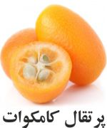 پرتقال کامکوات
