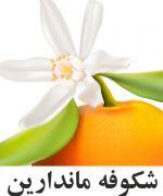 نارنگي شکوفه