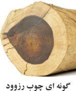 چوب بلسان