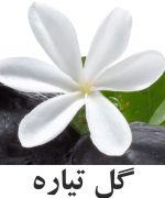 Tahitian تايرا گل