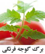 گوجه فرنگي برگ