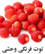 Wild توت فرنگي